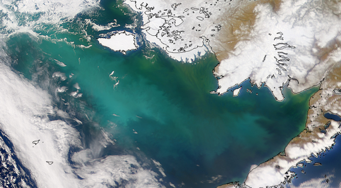 <strong>BERING SEA -THE GATEWAY TO THE ARCTIC</strong>