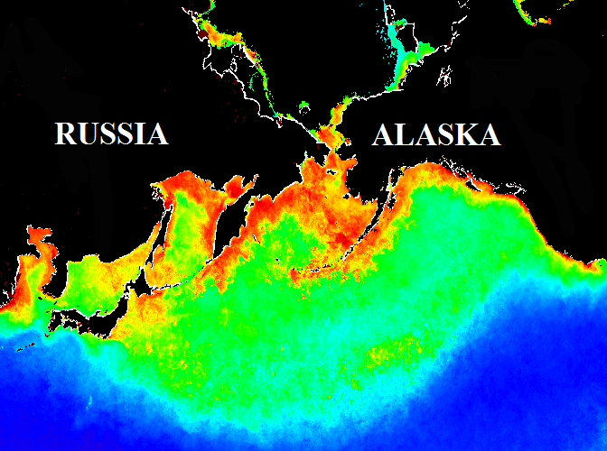 <strong>SUBARCTIC PACIFIC OCEAN</strong>